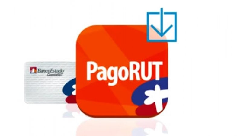 PagoRUT